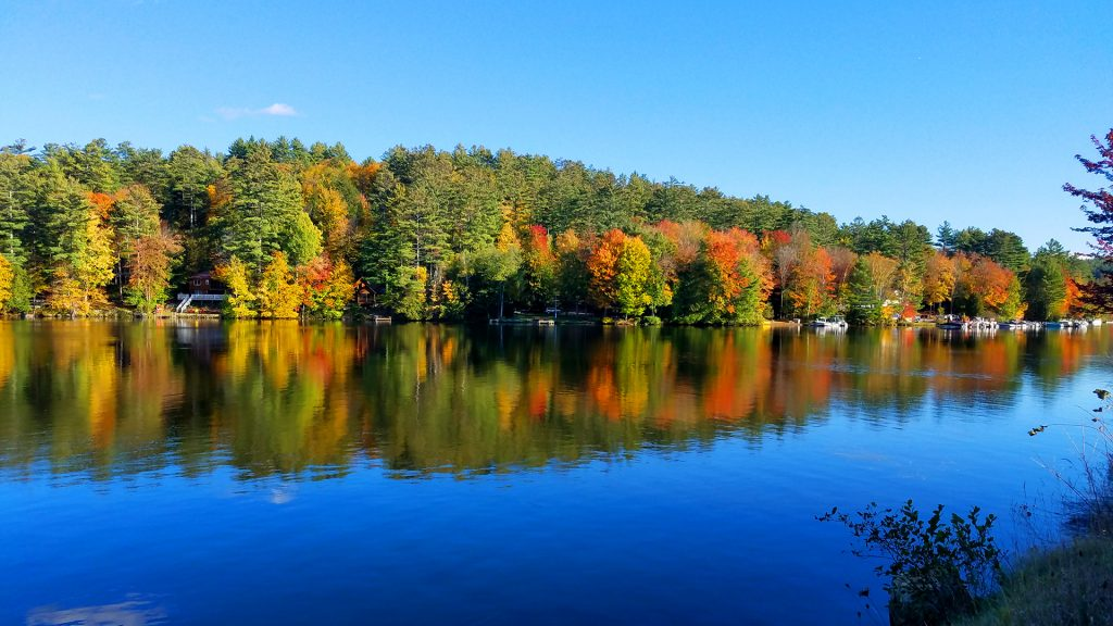 Fall Foliage on lake