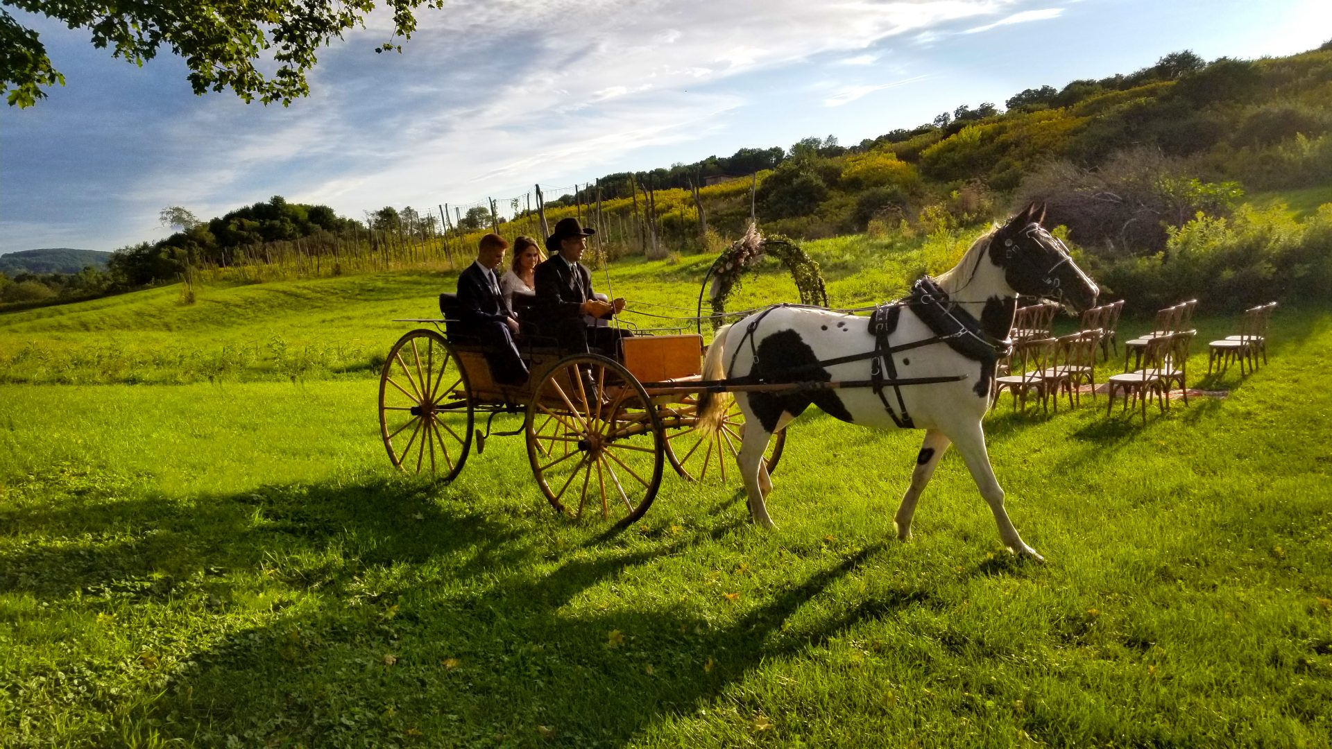 Bride and Groom, Horse and Carriage Moving