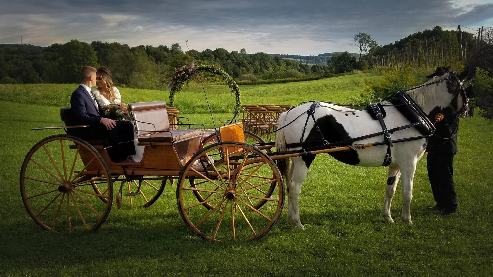 Bride and Groom, Horse and Carriage