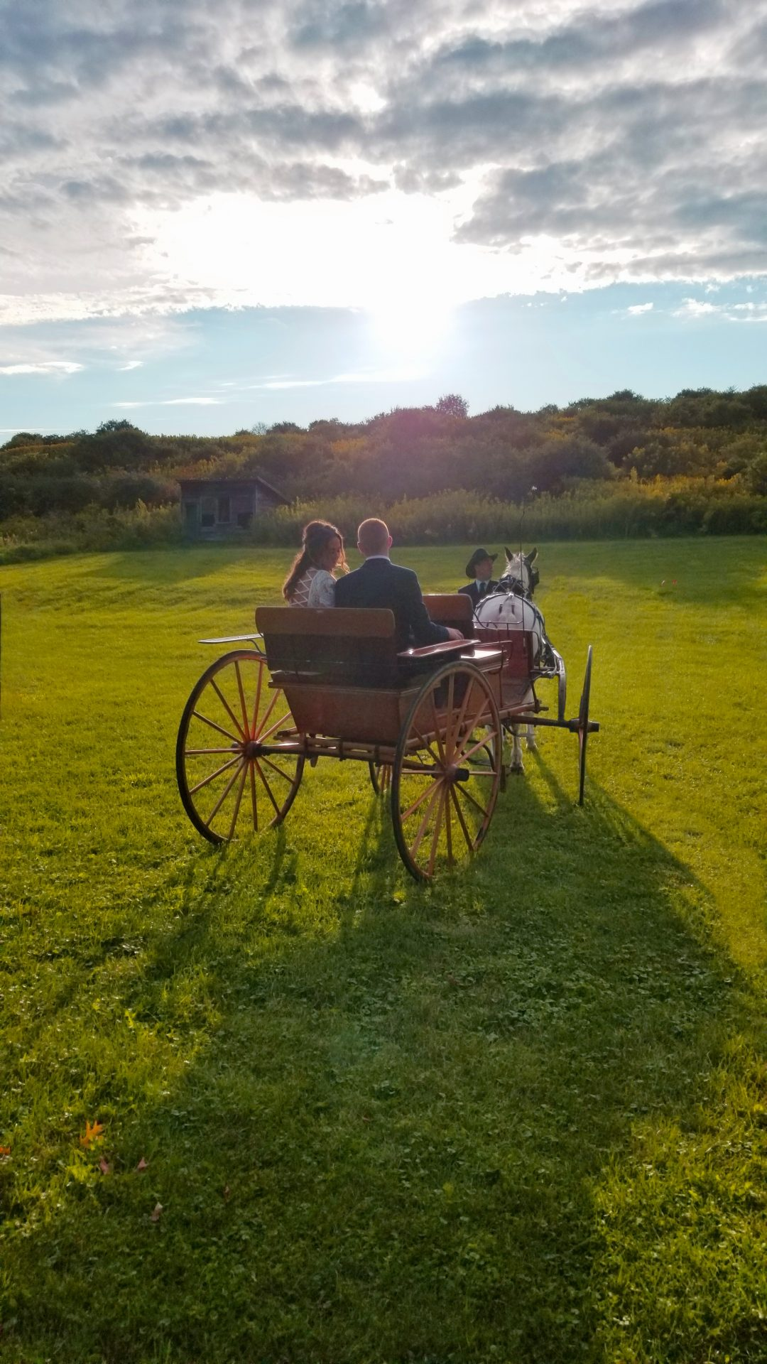 Bride and Groom, Horse and Carriage Into The Sun